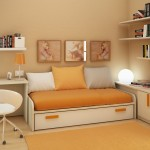 Livingroom Set Custom 3